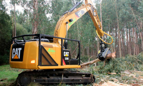 caterpillar-forestal