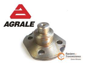 8012.103.093.00.8 AGRALE pin pivote inferior